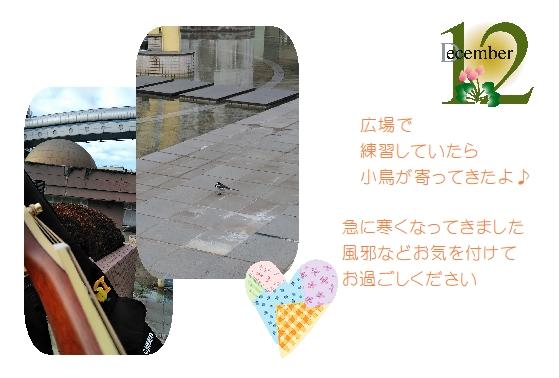 171201card